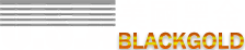 美國黑金logo1